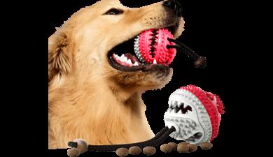 Hundelegetøj til Godbidder