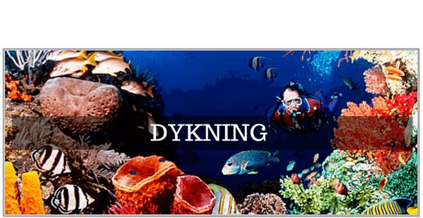 GoPro tilbehør til Dykning, Snorkling & UV jagt