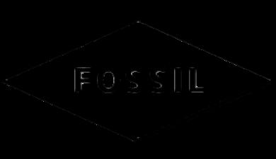 Fossil Smartwatch Tilbehør