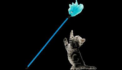 Drillepind til Kat