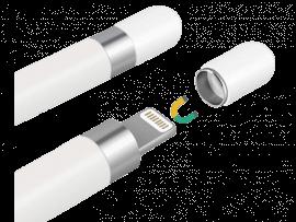 Magnetisk Beskyttelseshætte til Apple Pencil