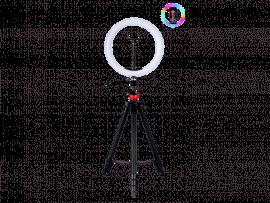33 CM Selfie Ring Lys m. Foldbar Tripod (35cm-135cm)