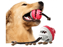 Snackbold til Hunde