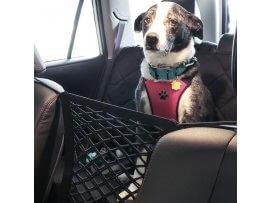 Hunde Beskyttelsesnet til Bil - 29 x 24 cm
