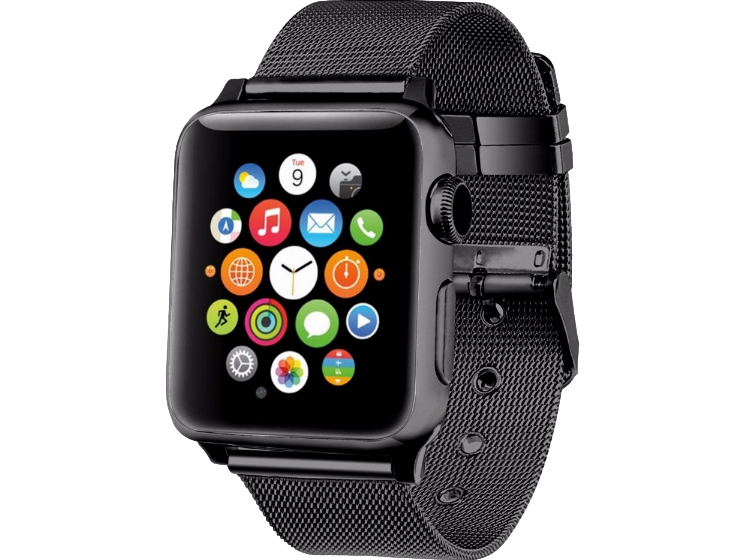 Image of   Fermo Metal rem til Apple Watch